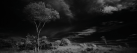 <strong>INFRARED LANDSCAPES</strong>